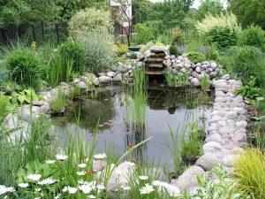 Garden Pond Installer